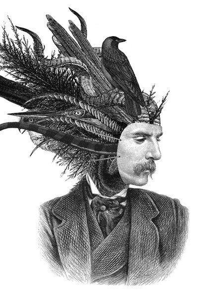 Dan-Hillier-Feather-and-Claw-1