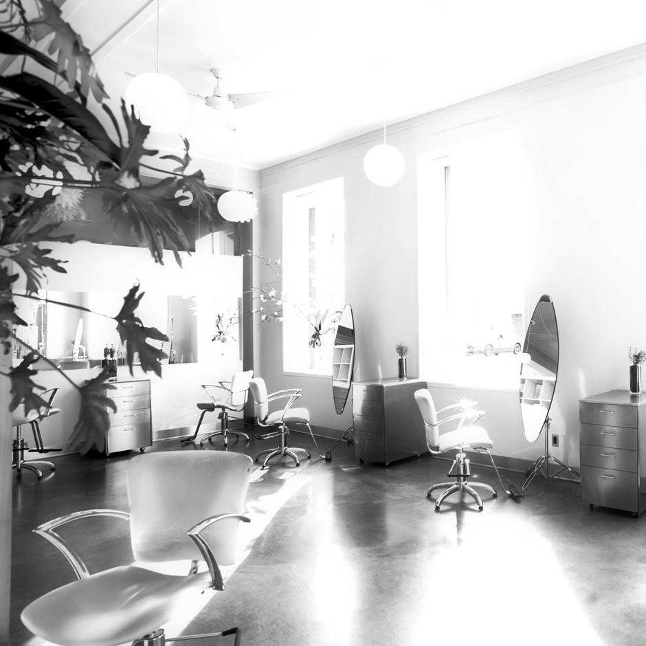 fred-salon